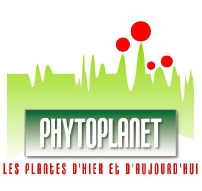 Phytoplanet